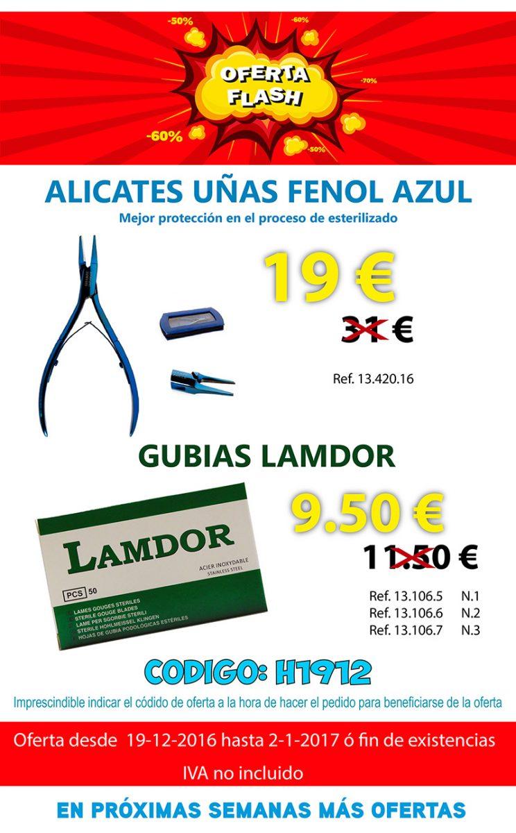 0022016363450_venta-flash_mailing-19-12-16